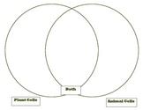 Venn Diagram - Compares Plant and Animal Cells