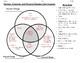 Venn Diagram: Physical,Chemical, and Nuclear Change