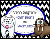 Venn Diagram - Polar Bears and Walruses