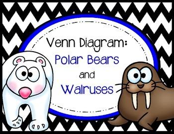 Venn Diagram - Polar Bears and Walruses