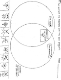 Venn Diagram and Pictograph sort