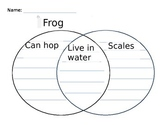 Venn Diagram for Frog and Fish comparison in Kindergarten