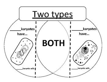 prokaryote vs eukaryote