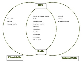 Venn diagram plant animal cells comparison cells unit part 1 key ccuart