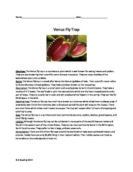 Venus Fly Trap - Review Article - Questions Activities Word Search