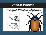 Veo un insecto texto / I See an Insect Emergent Reader in Spanish
