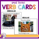 Regular and Irregular Past tense Verb Cards | Real photos