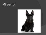 Verbs-ESTAR and Prepositional Phrases Practice