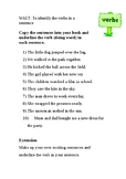 Verbs differentiated worksheets