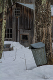 Vermont Maple Syrup Time!