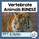 Vertebrate Animals: PowerPoint & Graphic Organizer Worksheets