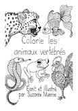 Vertebrate Animal Classification Colouring Book