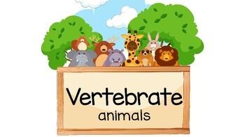 Vertebrate Animals
