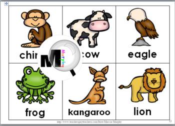 Vertebrate Animals Bingo Game (Animal Classification)