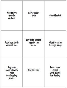Vertebrate Characteristics Card Game