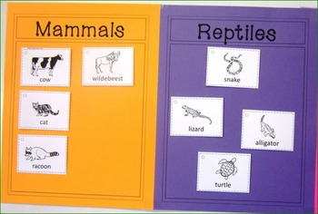 Vertebrates and Invertebrates: Vertebrate Posters, Flash Cards and Sorting