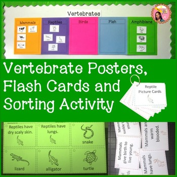 Vertebrates and Invertebrates: Vertebrate Posters, Flash C
