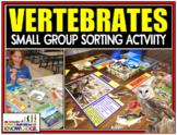 Animal Classification: Vertebrate Sorting Activity