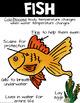 Vertebrate and Invertebrate Animal Posters