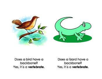 Vertebrate and Invertebrate Books - 2 Easy Readers!