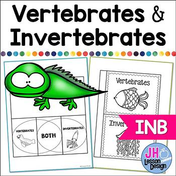 Vertebrate and Invertebrate Interactive Notebook Activities