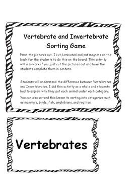 Vertebrate and Invertebrate Sorting Game