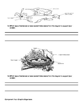Vertebrate and Invertebrate Test