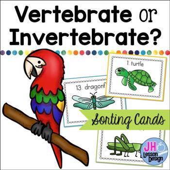 Vertebrate or Invertebrate? Sorting Activity