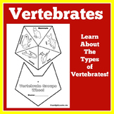 Vertebrates Activity | Vertebrates and Invertebrates Activity