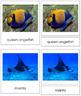 Vertebrates: Class Pisces/Fish