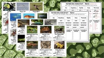 Vertebrates Classification Sorting Card Game