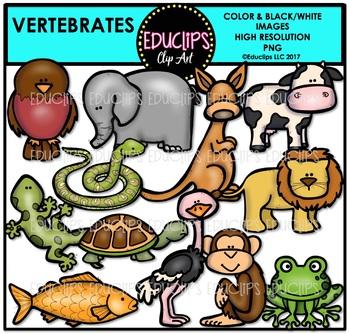 Vertebrates Clip Art Bundle {Educlips Clipart}