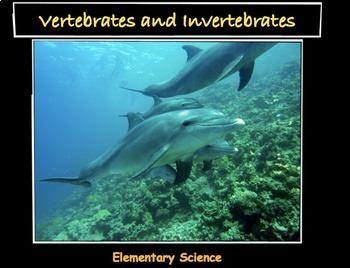 Vertebrates & Invertebrates - LP