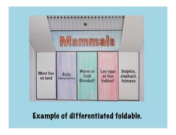 Vertebrates: Mammals Science Interactive Foldable