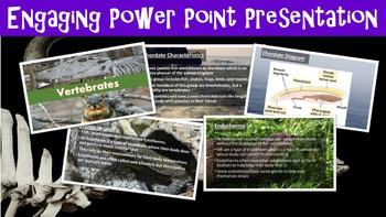 Vertebrates Lesson with Power Point, Worksheet, and Activity Page