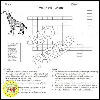 Vertebrates Crossword Puzzle