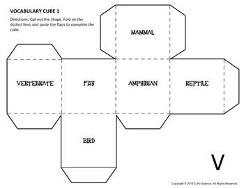 Vertebrates Science Cubes