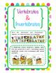 Vertebrates and Invertebrate Animals