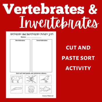 Vertebrates and Invertebrates Activity