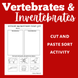 Vertebrates and Invertebrates Activity | Vertebrates and Invertebrates Worksheet