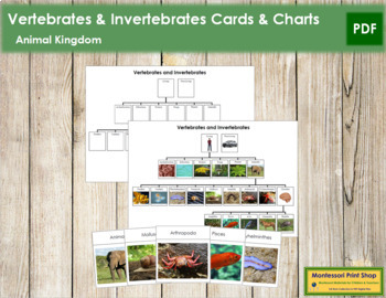 Vertebrates and Invertebrates: Charts and Cards