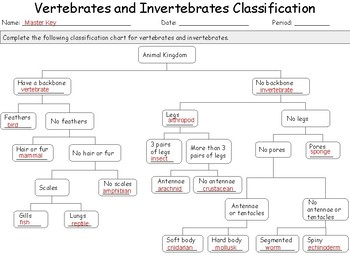Vertebrates and Invertebrates Classification