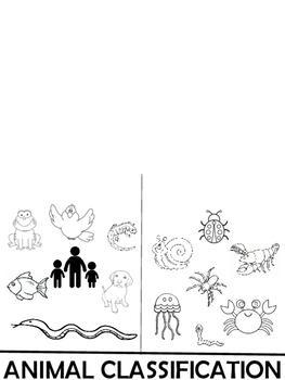 Vertebrates and Invertebrates Foldable