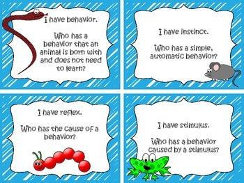 "Vertebrates and Invertebrates ""I Have, Who Has"" Game"