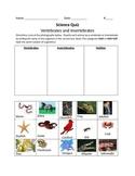 Vertebrates and Invertebrates Quiz