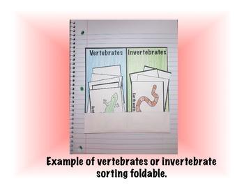 Vertebrates and Invertebrates Science Interactive Sorting Foldable