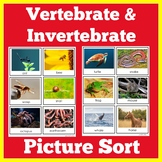 Vertebrates and Invertebrates Sort Cards