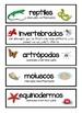 Vertebrates and Invertebrates Spanish Vertebrados e Invertebrados