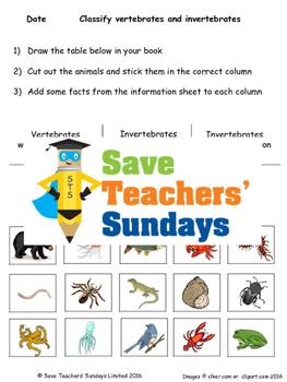Vertebrates and invertebrates / Animal skeletons Lesson plan, Text and Worksheet