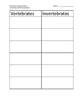 Vertebrates and invertebrates chart